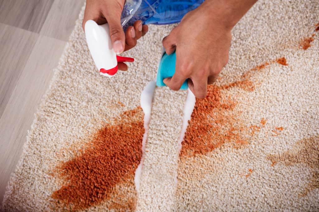 carpet cleaning service burnley